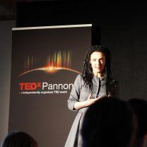@ TEDxPannonia 2011